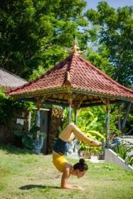 Polly Bali