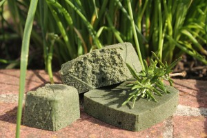 Aloe vera algae spirulina vegan soap gentle summer